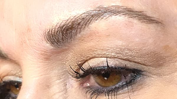 Image of eyebrows after applying eyebrow pencil